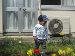 4月2「水仙に囲まれて」