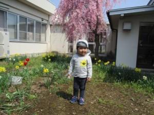 4月4「桜をバックに」
